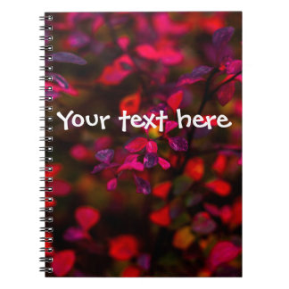 Autumn Flames Notebook