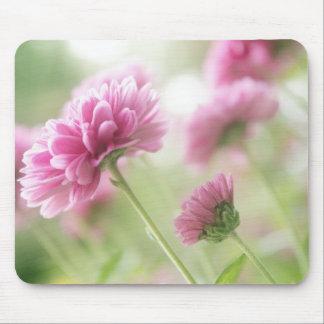 Autumn flowers mouse pad