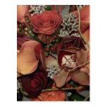 Autumn Flowers Postcard
