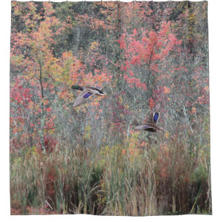 Autumn Foliage and Mallard Ducks Shower Curtain