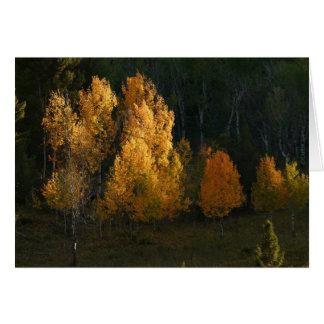 Autumn Foliage Card