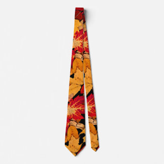 Autumn Foliage in Red Orange Yellow Brown Tie