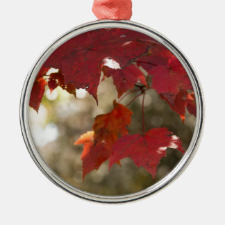 Autumn Foliage Silver-Colored Round Decoration