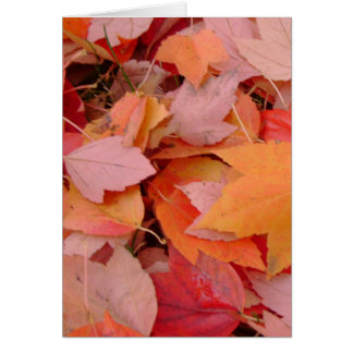 Autumn Foliage Splendor Forest Lake Destiny Card