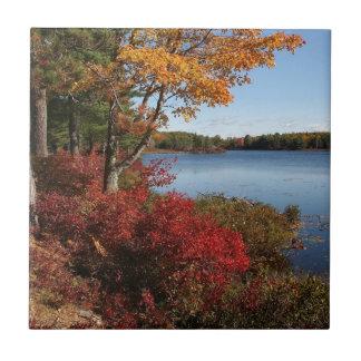 Autumn Foliage Splendor Forest Lake Destiny Tiles