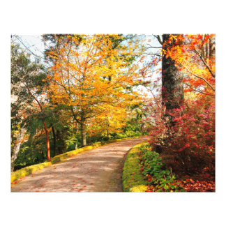 Autumn footpath in Azores 21.5 Cm X 28 Cm Flyer