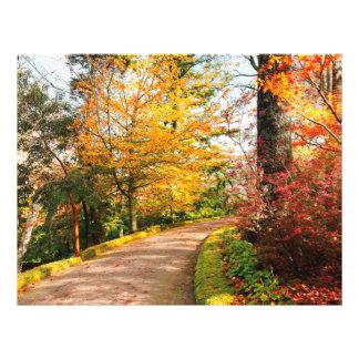Autumn footpath in Azores 21.5 Cm X 28 Cm Flyer