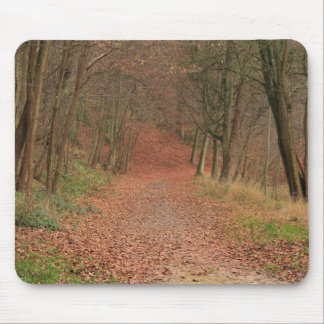 Autumn Forest Mouse Pad