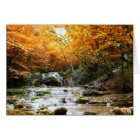 Autumn Forest Waterfall Note Card