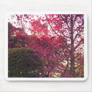 Autumn Garden Mouse Pad