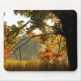 Autumn Glow Mouse Pad
