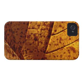Autumn Gold Leaf Case-Mate iPhone 4 Cases