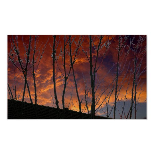 Autumn Gold Sunset in the Country Poster