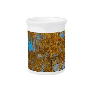 Autumn golden tree pitcher