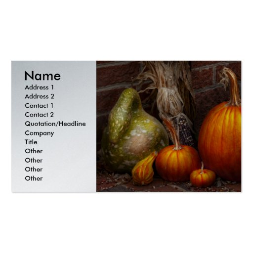 Autumn - Gourd - Family get together Business Card