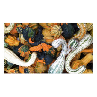 Autumn Gourds Pack Of Standard Business Cards
