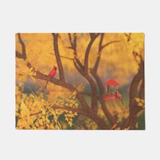 Autumn Guardian Doormat