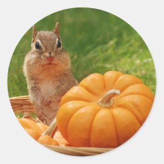 Autumn Harvest Chipmunk Round Stickers