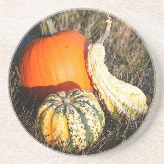 Autumn Harvest Coasters