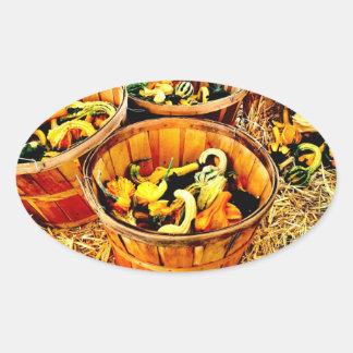 Autumn Harvest Pumpkins & Gourds Thanksgiving Oval Sticker