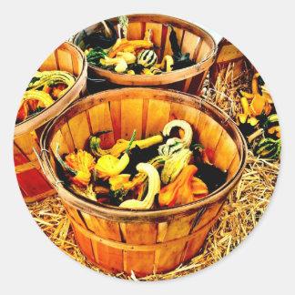 Autumn Harvest Pumpkins & Gourds Thanksgiving Round Sticker