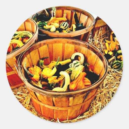Autumn Harvest Pumpkins & Gourds Thanksgiving Sticker