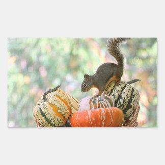 Autumn Harvest Squirrel Rectangular Sticker