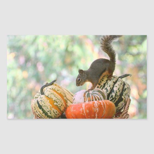 Autumn Harvest Squirrel Rectangular Sticker