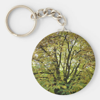 Autumn Horse Chestnut Tree Basic Round Button Key Ring