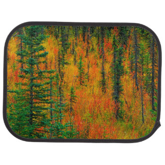 Autumn in a meadow car mat