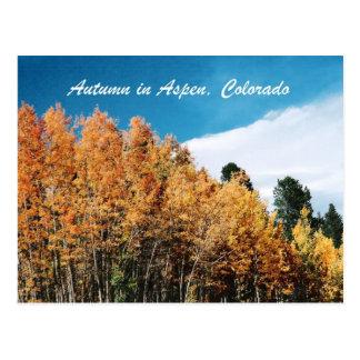 Autumn in Aspen Postcard