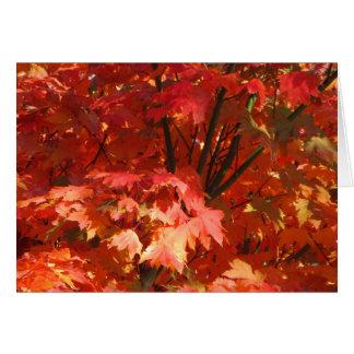 Autumn in Canberra Card