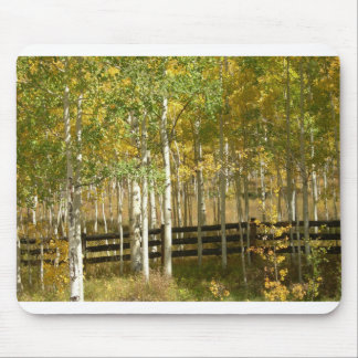 Autumn in Colorado Mouse Pad