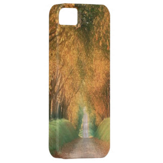 Autumn in Germany Case-Mate iPhone 5 iPhone 5 Covers