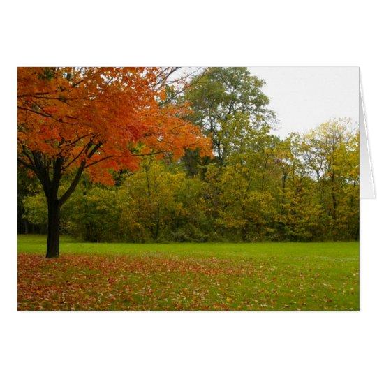 Autumn in Highland Park Card
