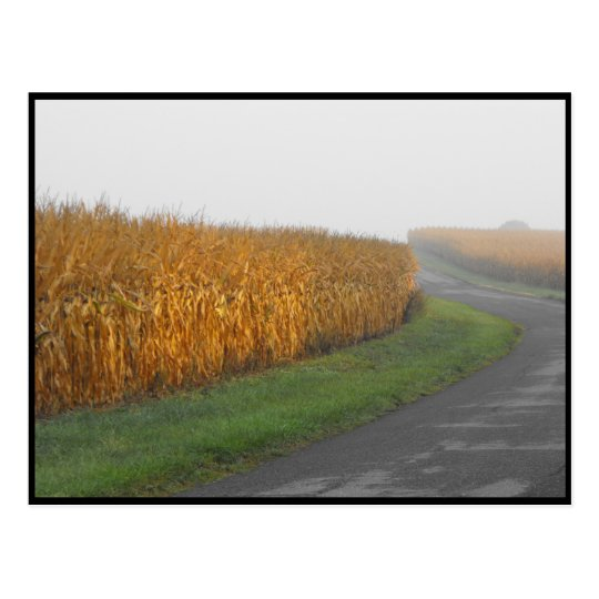 ~ Autumn in Lancaster County ~ 32 Postcard