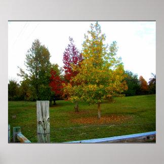 Autumn in Missouri Poster