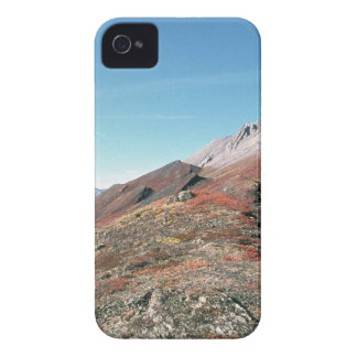 AUTUMN IN MOUNTAINS SCENIC Case-Mate iPhone 4 CASE