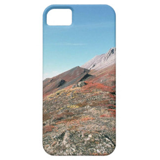 AUTUMN IN MOUNTAINS SCENIC iPhone 5 COVERS