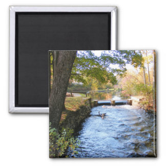 Autumn in New England 47 ~ magnet