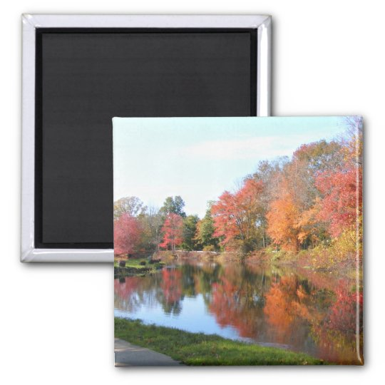 Autumn in New England 54 ~ magnet