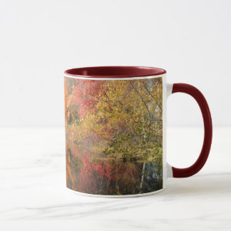 Autumn in New England 54 ~ mug
