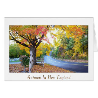 Autumn In New England Card