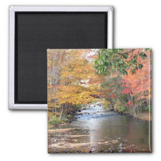 Autumn in New England Square Magnet