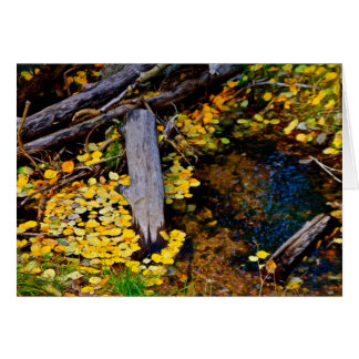 Autumn in New Mexico Greeting Card