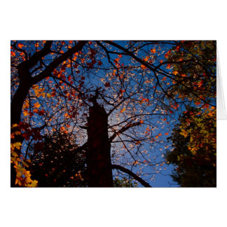 Autumn in New Mexico Greeting Cards
