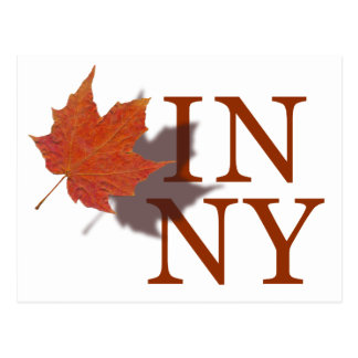 Autumn in New York Postcard