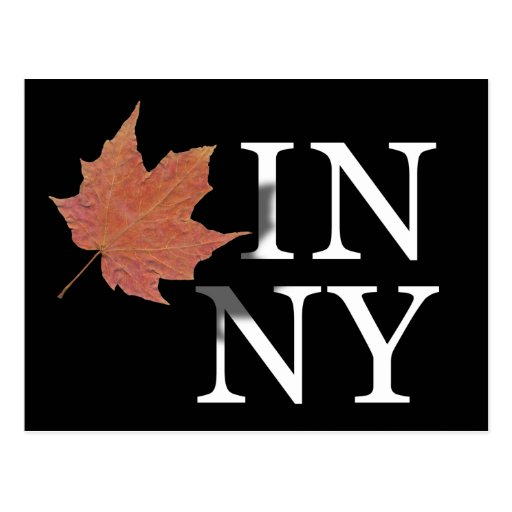 Autumn in New York Postcard