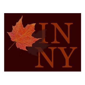 Autumn in New York Postcards