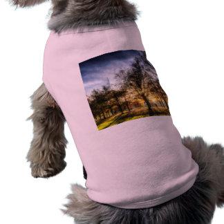 Autumn in Pastels Shirt